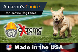 Amazon's choice for Electric Dog Fence