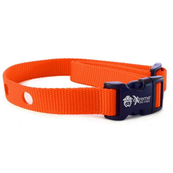 Collar Strap - Bright Orange