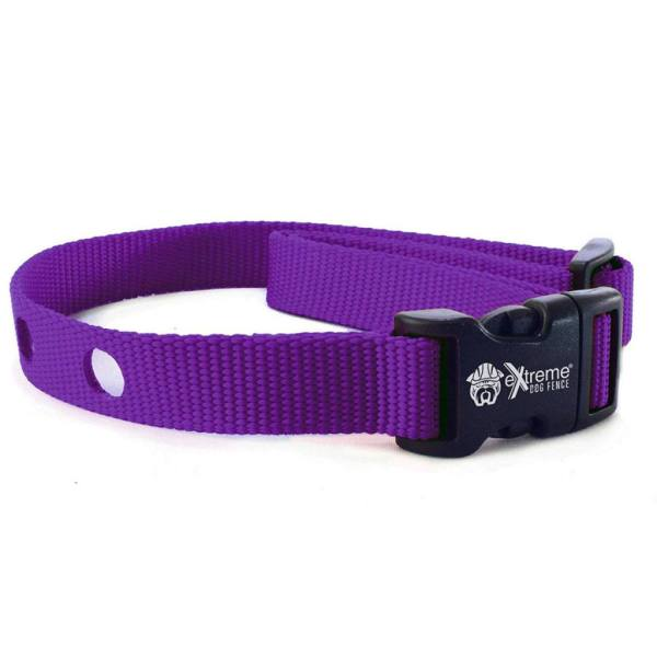 Collar Strap - Purple