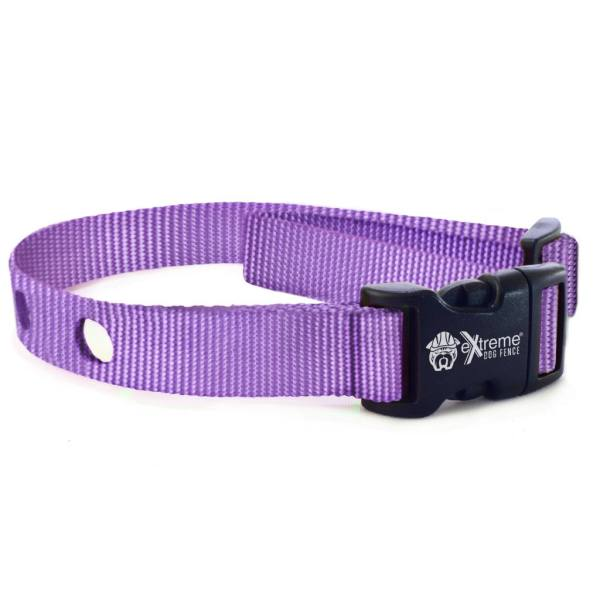 Orchid Color Collar