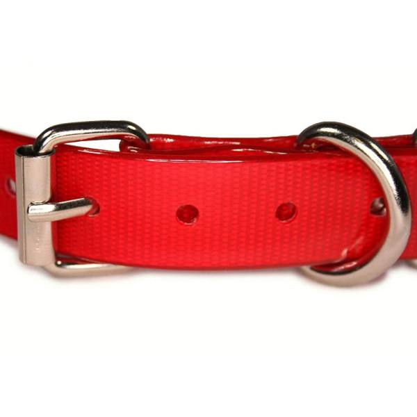 TPU Collar buckle Close-up