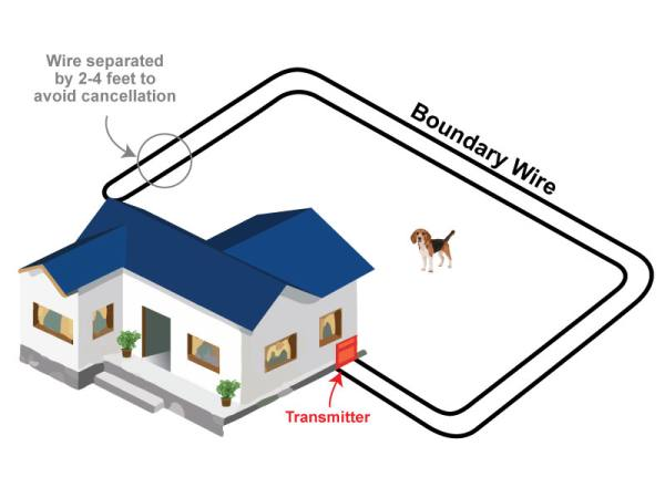 Backyard Only Dog Fence Layout The Double-Loop