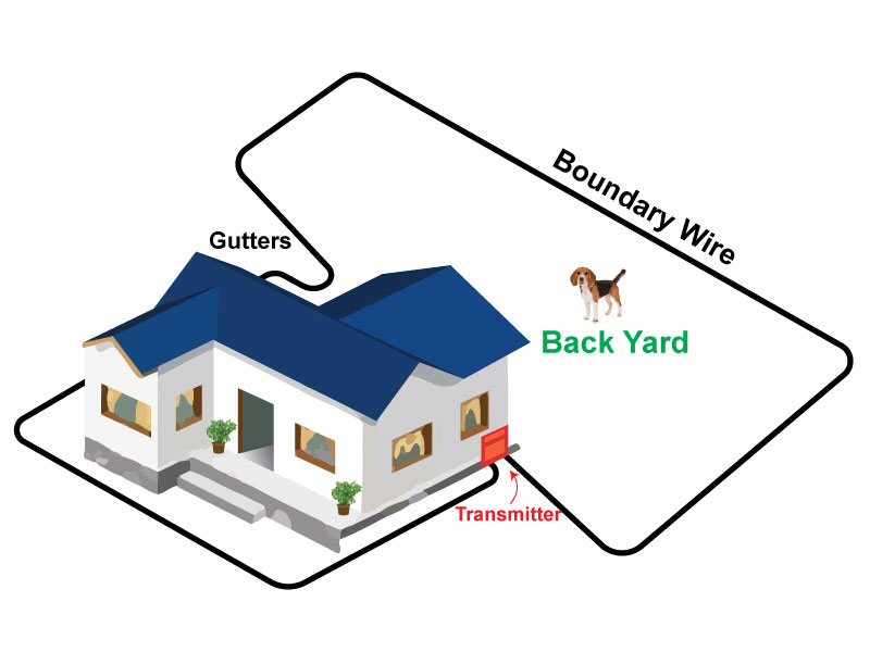 Backyard Only The Pinch Method