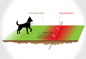 A graphic showing the signal field